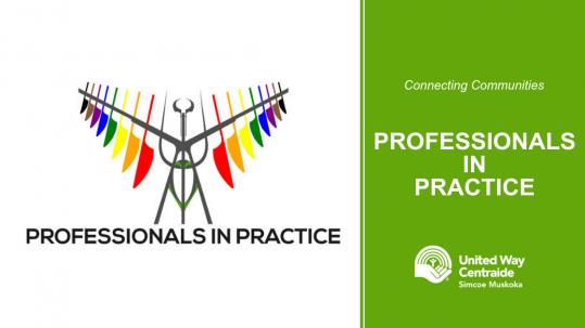 Connecting Communities: Professionals in Practice
